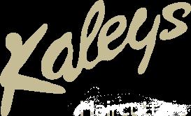 logo_middle copylight
